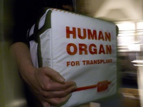 ОБСЕ предлагает [пересмотреть наказания за «черную трансплантологию»]