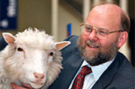Создатель овечки Долли не считает [клонирование человеческих эмбрионов аморальным]