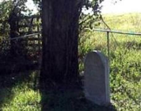 Надгробия-мутанты заменят памятники