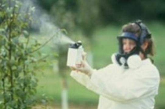 Пестициды значительно увеличивают вероятность развития [болезни Паркинсона]
