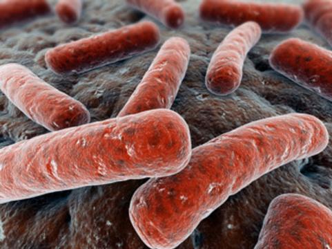 Обнаружена ключевая молекула [антибиотикоустойчивости возбудителя туберкулеза]