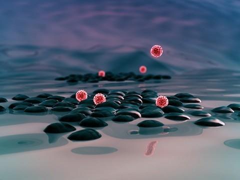 Аутоиммунные болезни: гены и их регуляция