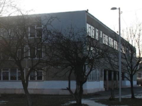 Из-за гриппа H1N1 в калининградской школе [полностью прекращены занятия]