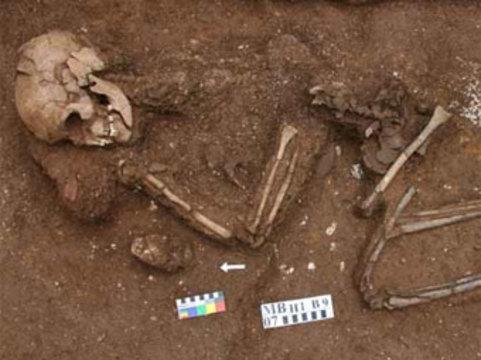 В Северном Вьетнаме обнаружены [древнейшие останки паралитика]