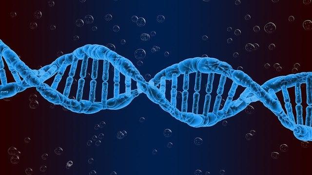 «Ген деменции» увеличивает риск тяжелого течения COVID-19 — выводы ученых