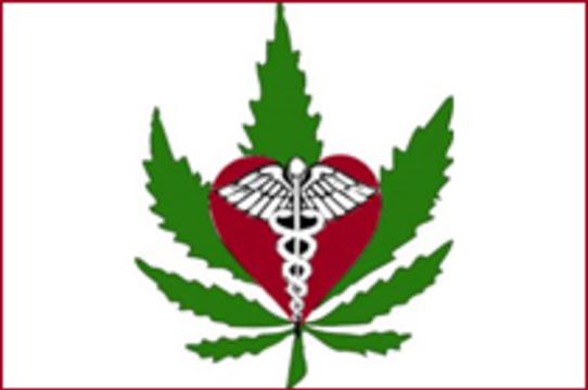 Избиратели Мичигана одобрили [медицинское применение марихуаны]