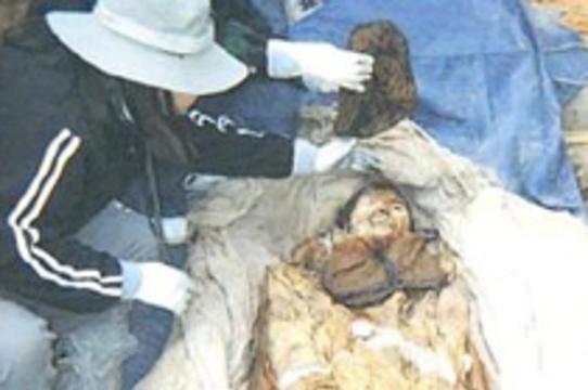 Древнейший образец вируса гепатита [нашли в корейской мумии]