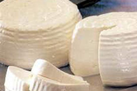 [Редкая форма туберкулеза] распространилась на юге США благодаря сыру