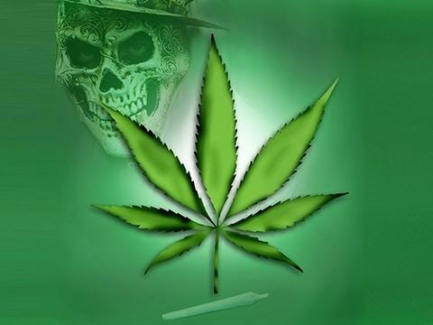 Марихуана пить марихуану и потомство
