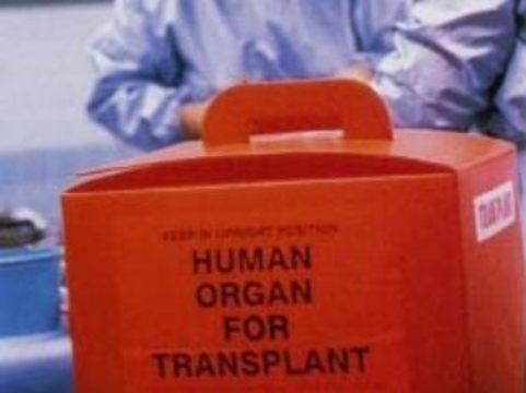 Когда не хватает органов