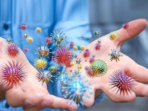 Антибактериальные салфетки и жидкости не избавят ваш дом от микробов