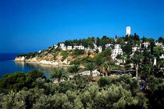 Птичий грипп добрался до популярного турецкого курорта