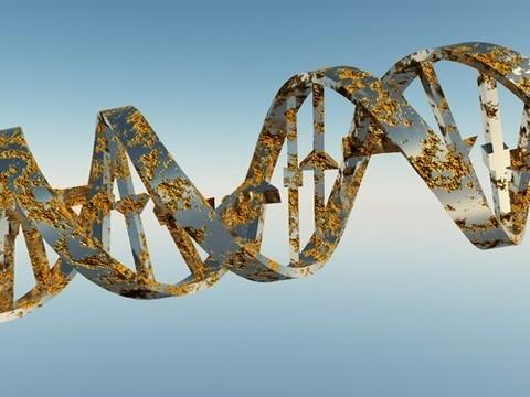 Создан первый каталог генетических мутаций, связанных с аутоиммунными болезнями