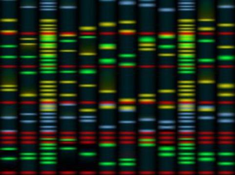 Генетические исследования [выявили новые возможности терапии рака груди]
