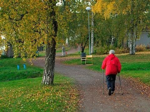 В московских парках устанавливают спортивные тренажеры для пожилых людей