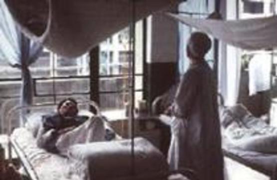 Китай покажет международным экспертам эпидемию атипичной пневмонии