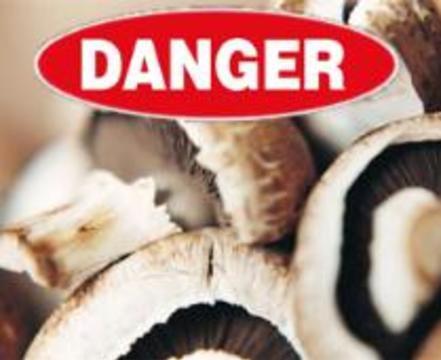 9 человек скончалось из-за отравления грибами в Воронежской области