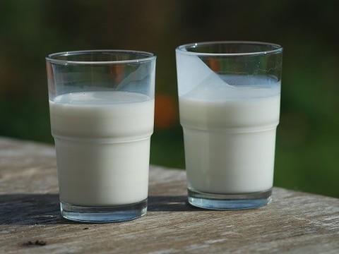 Роспотребнадзор рекомендовал не пить сырое молоко из-за энцефалита
