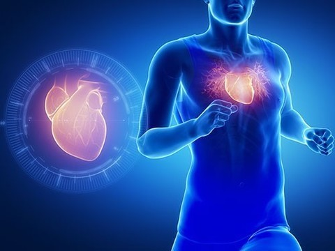 На радость лентяям: интенсивные физические тренировки повышают риск смертельных болезней