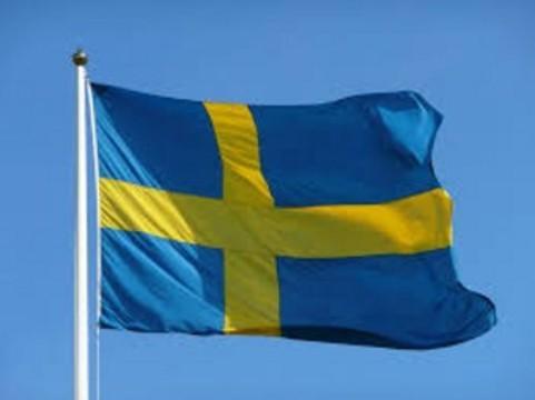 Швецию назвали [европейским лидером по половым инфекциям]