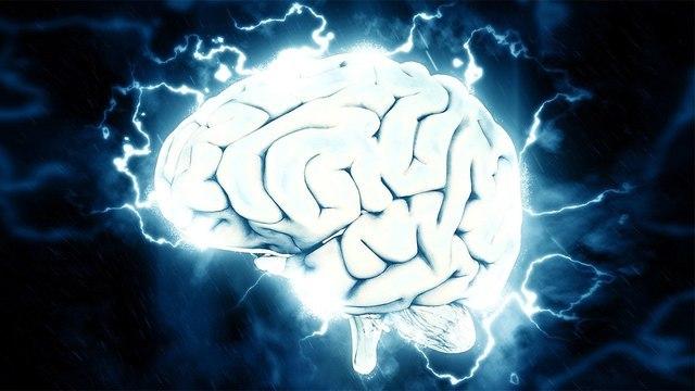Американские ученые выяснили, где прячется стресс в человеческом мозге