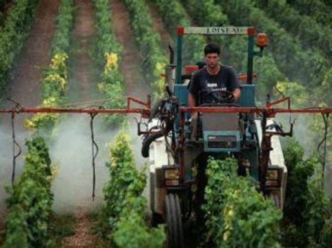 [Роспотребнадзор ужесточит] требования к уровню пестицидов в пище