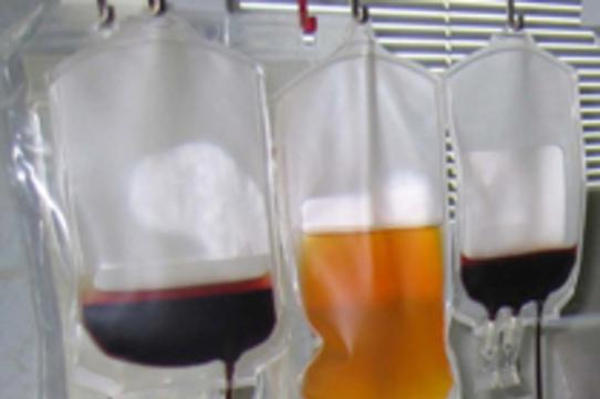 ФТС сняла запрет на вывоз из России биоматериалов