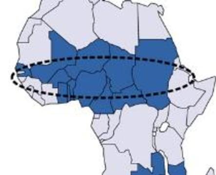 В Африке свирепствует эпидемия менингита