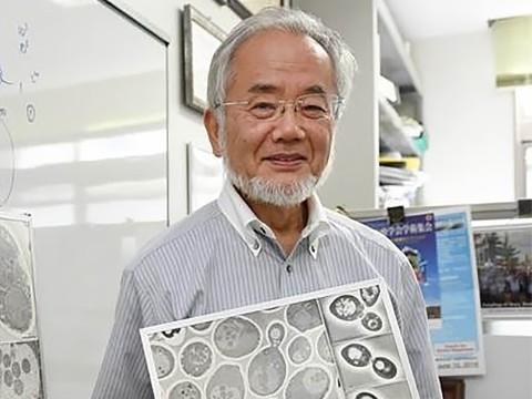 Нобелевскую премию по физиологии и медицине вручили японскому биологу