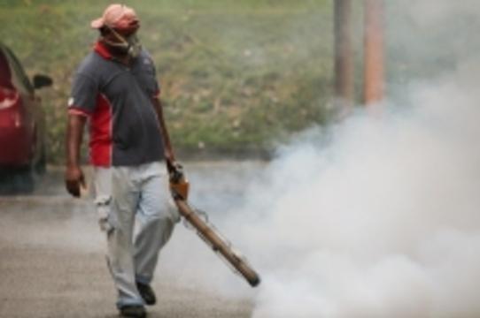 Минздрав Аргентины объявил о начале [эпидемии лихорадки денге]