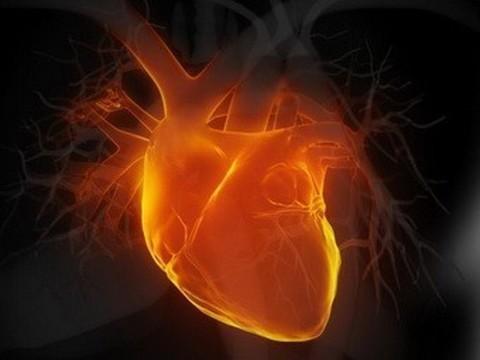 55-летние россияне умирают от болезней сердца чаще, [чем 75-летние французы]