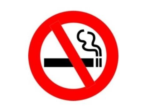 Россияне поддержали [запрет на курение в общественных местах]