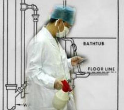 Вирус атипичной пневмонии распространяется через канализацию и вентиляцию, тараканов и крыс