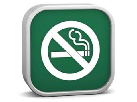 Эстония поддержала [запрет на ментоловые сигареты]