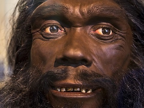 ДНК древних людей можно найти даже без их костей