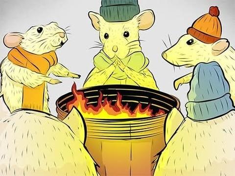Результаты большинства экспериментов на мышах некорректны?