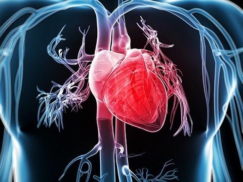 У 67-летнего американца диагностирован редкий порок сердца