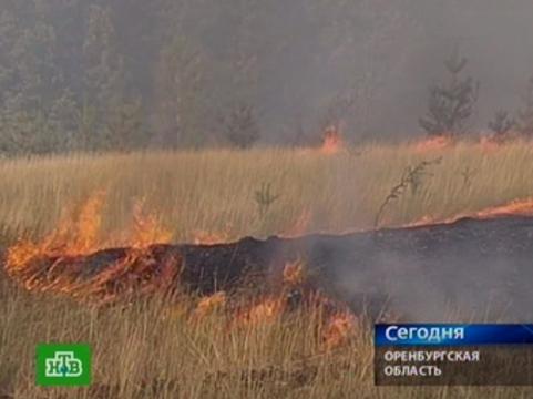 Минздрав опубликовал [рекомендации по поведению при смоге и пожарах]
