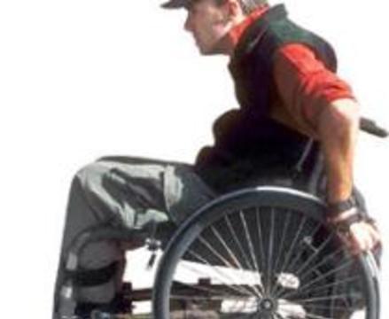Американцы научились лечить паралич, пока у крыс