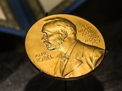 Нобелевская премия по медицине присуждена за открытие механизма циркадных ритмов