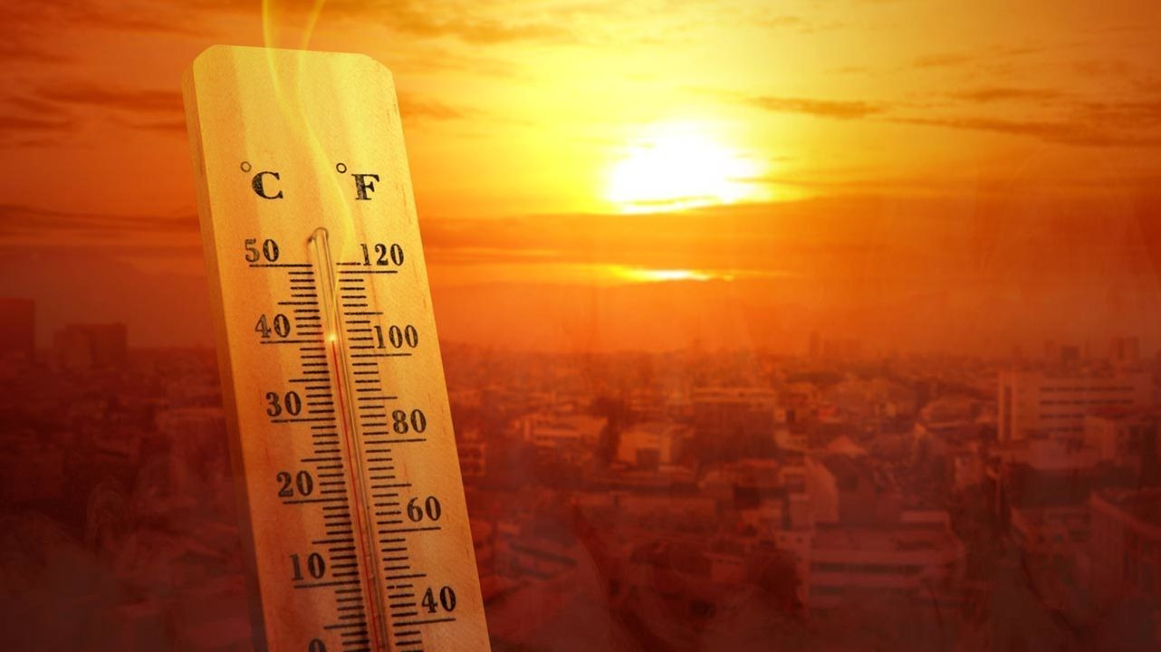 Аномальная жара ежегодно уносит сотни тысяч жизней — исследование
