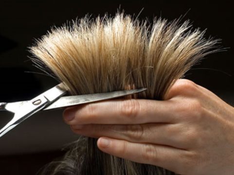 [Частички волос разрушили нос] британской парикмахерше
