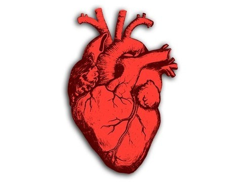 Только малая часть рекомендаций по болезням сердца подкреплена качественными исследованиями