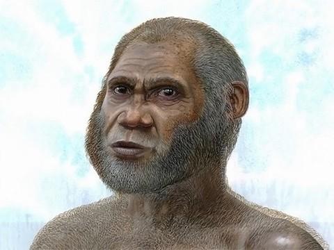 Останки древних людей, найденные в Китае, принадлежат новому виду человека