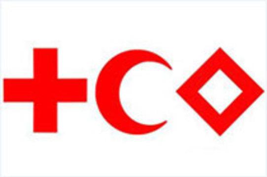 Путин пообещал Красному Кресту [содействие]