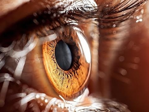 Новая терапия спасет людей от слепоты