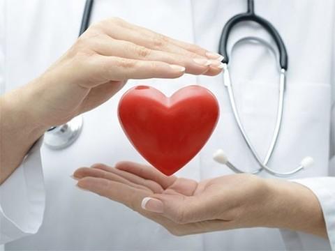 Всемирный день сердца. Где можно проверить здоровье в ближайшие дни