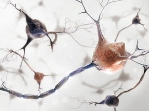 Рассеянный склероз можно [обнаружить за несколько лет до появления симптомов]