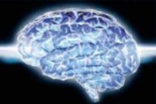 В мозгу обнаружен белок, отвечающий за воспоминания