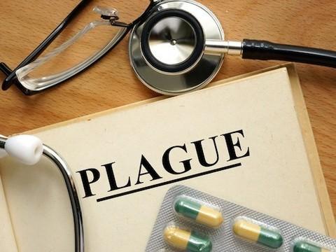 В США выросла заболеваемость чумой
